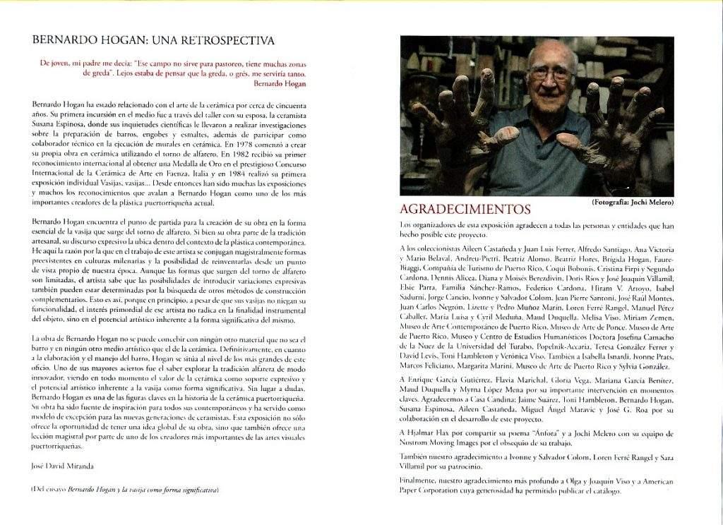 Bernardo Hogan-retrospectiva 2017